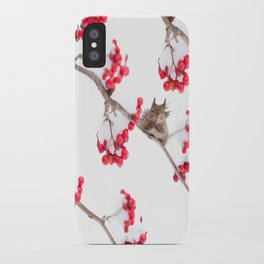 Cute Squirrel With Red Rowan Berries On A White Background #decor #society6 #buyart iPhone Case
