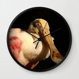 Roseate Spoonbill Portrait Wall Clock