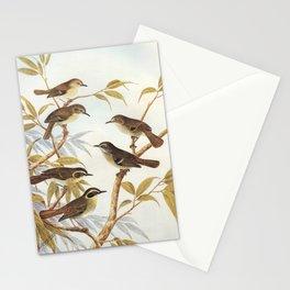 Neville W. Cayley - What Bird Is That? (1931) - Scrubwren Stationery Cards