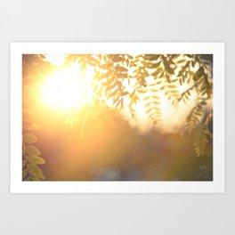 Sun Soak Art Print