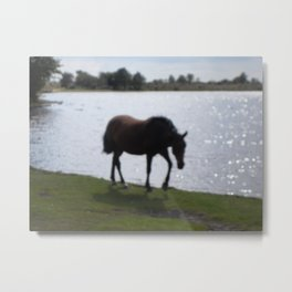 Horse and the Water Metal Print