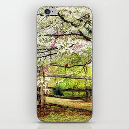 Dogwoods and Red Birds iPhone Skin