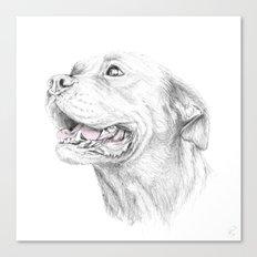 Murphy :: Loyalty Canvas Print