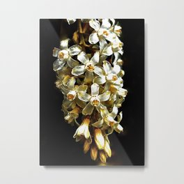 Flowering Currant, White Icicle Metal Print