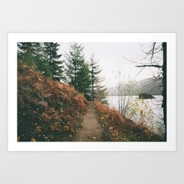 Happy Trails XVI Art Print