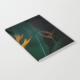 Orchids yellow Notebook