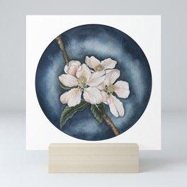 Apple blossom in the evening sun Mini Art Print