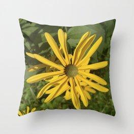 Green eyed Black Eyed Susan Throw Pillow