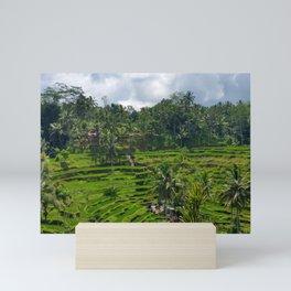 Bali Rice Fields Mini Art Print