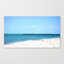 Beach & Birds Canvas Print