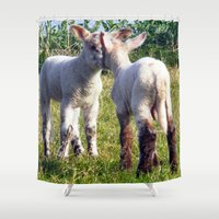 silence of the lambs Shower Curtains featuring Spring Lambs by Valann