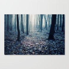Brume Canvas Print