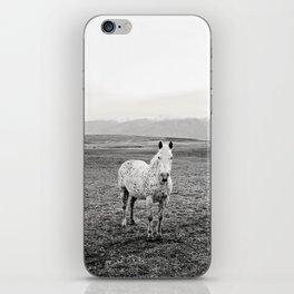Appaloosa Horse | Western Art iPhone Skin