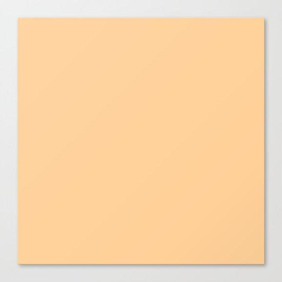 Simply Orange Sherbet Canvas Print