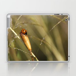 Morning Dew On Lady Bird Laptop & iPad Skin