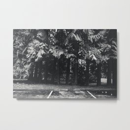 Moody Trees Metal Print