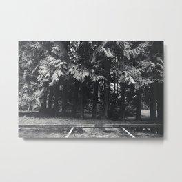 Moody Trees Metal Print