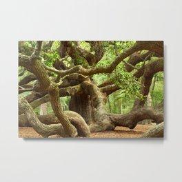 Angel Oak 1 Metal Print