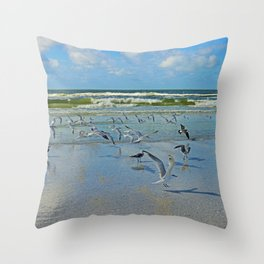 Time for Me to Fly Throw Pillow