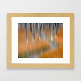 Aspen Forest Framed Art Print
