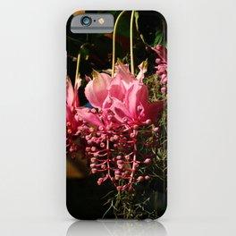 Marvelous  Magnifica iPhone Case