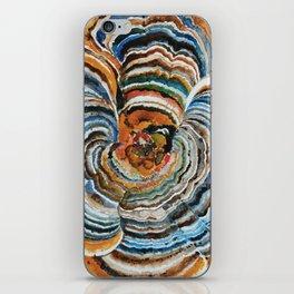 """Trametes """"Turkey Tail"""" Mushroom iPhone Skin"""