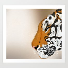 Tiger Profile Art Print