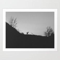 Cortez Deer Art Print