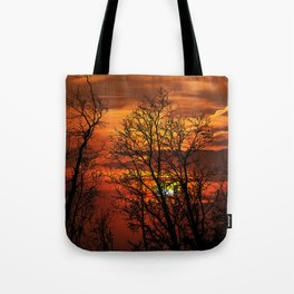Deadly trees silhouette on sunset Tote Bag