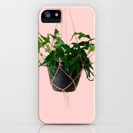 Kangaroo Paw Fern iPhone Case