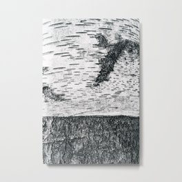 Birch, black & white Metal Print