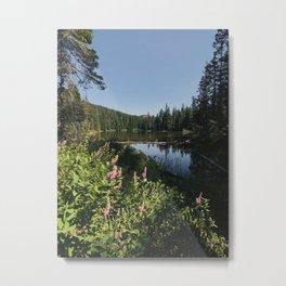 Jude Lake, Oregon Metal Print