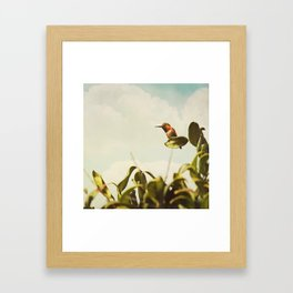 Sit a While Framed Art Print