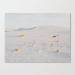 White Sands National Monument Canvas Print