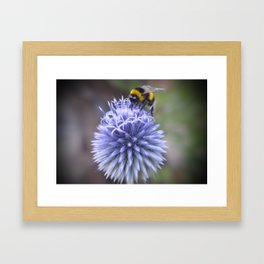 Save Our Bees Framed Art Print