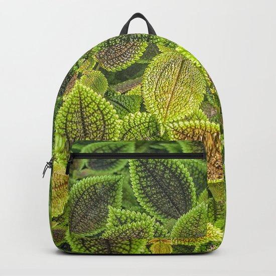 Friendship plant Backpack