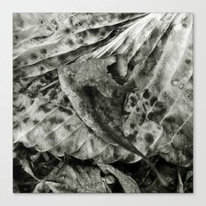 'ABSTRACT LEAF' Canvas Print