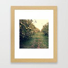 mutsu way Framed Art Print
