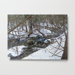 Winter Creek in the Forest Metal Print