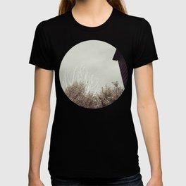 The stars T-shirt