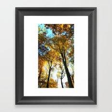 Glowing Treetop Framed Art Print