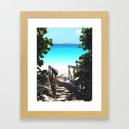 Trunk Bay walkway to beach, St. John Framed Art Print
