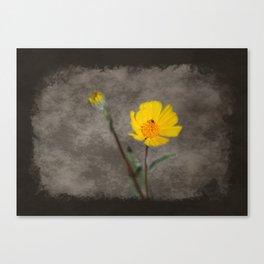 Oregon Sunshine Grunge at Coachella Valley Wildlife Preserve Canvas Print