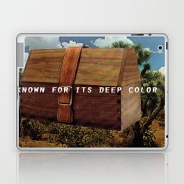 Known for it's Deep Color (Joshua Trees and Aaron Poritz Lunchbox) Laptop & iPad Skin