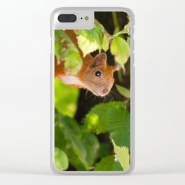 Peeking Clear iPhone Case