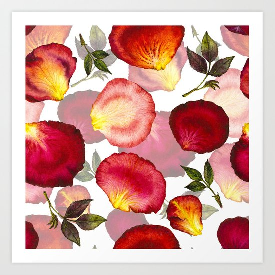 Rose Petal Pattern 02 Art Print