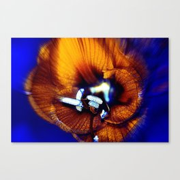 abstract flower   yy Canvas Print
