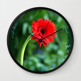 Gerbera Daisy In The Jar Wall Clock