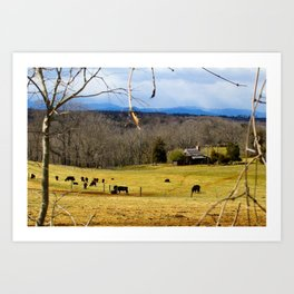 Cattle ranch overlooking the Blue Ridge Mountains Art Print