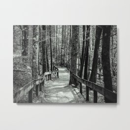 Follow the path, find your way Metal Print